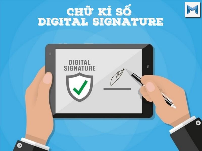 Signature là gì