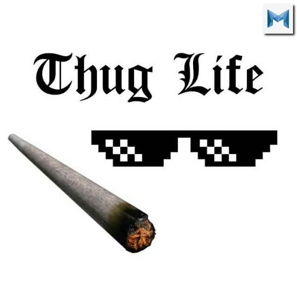 Thug life là gì ? Thug life có ý nghĩa gì?
