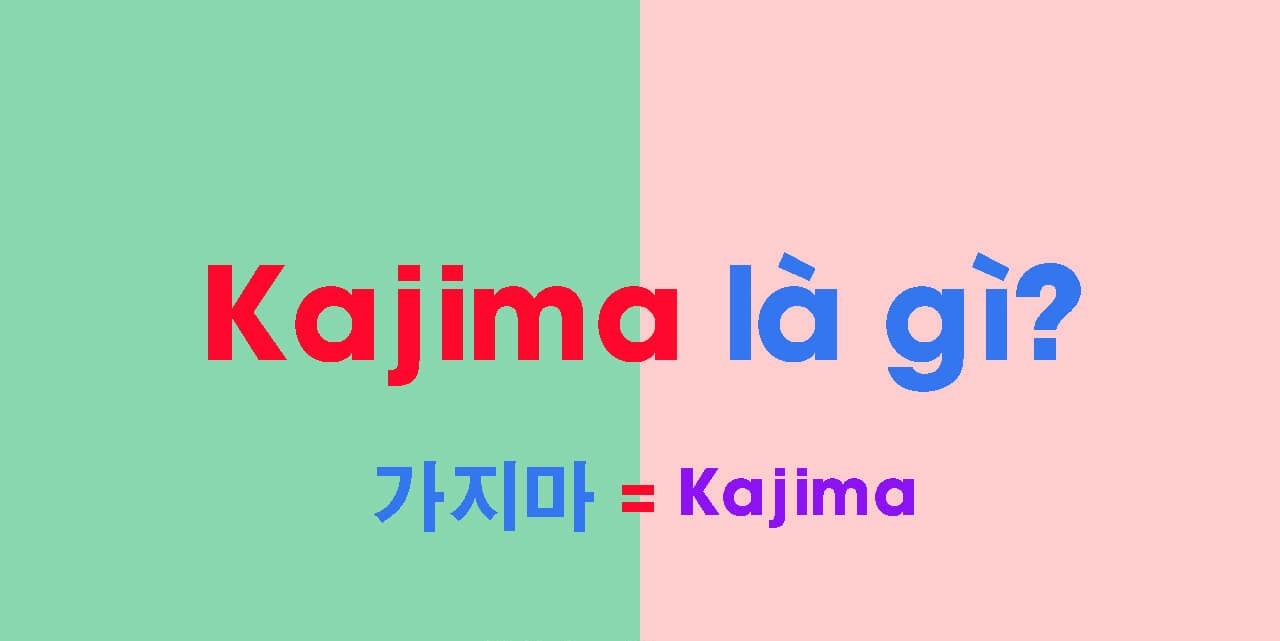 Kajima là gì? Baby Kajima có ý nghĩa là gì?