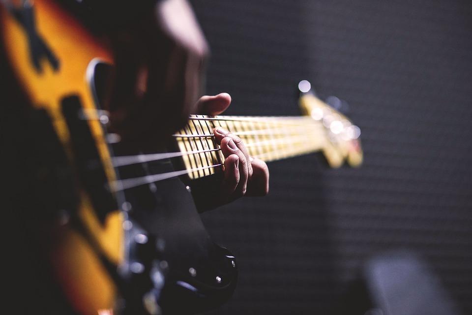Bassist là gì