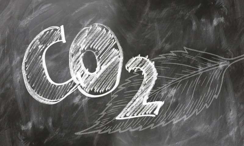 CO2 là gì? Khí CO2 là gì? Ứng dụng của khí CO2 trong đời sống.